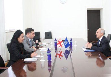 Gürcüstan XİN-də GUAM-ın baş katibi ilə görüş keçirilib